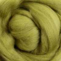 Wool Sliver - Bean Sprout M