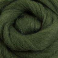 Wool Sliver - Fern