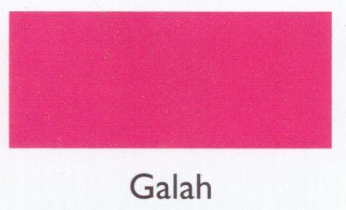 Galah